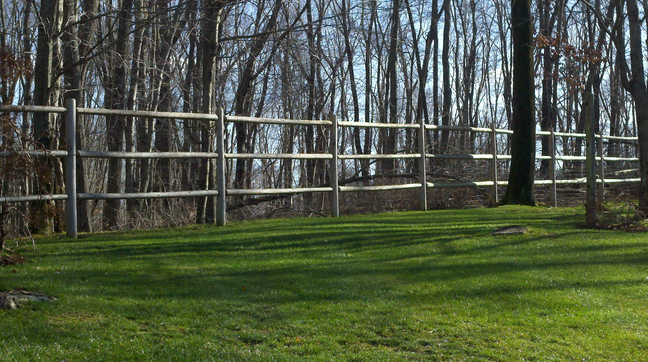 Red Fox Fence Horse Fence