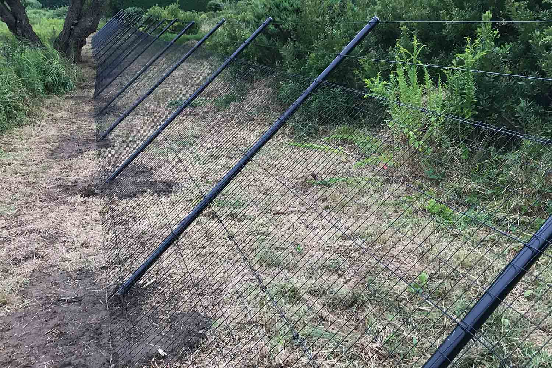 Red Fox Fence deer fencing