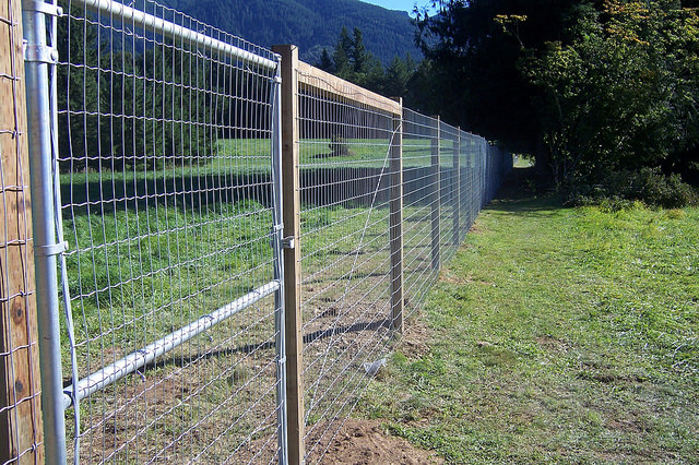 Deer Fencing - Fence Installation | Red Fox Fence, Inc